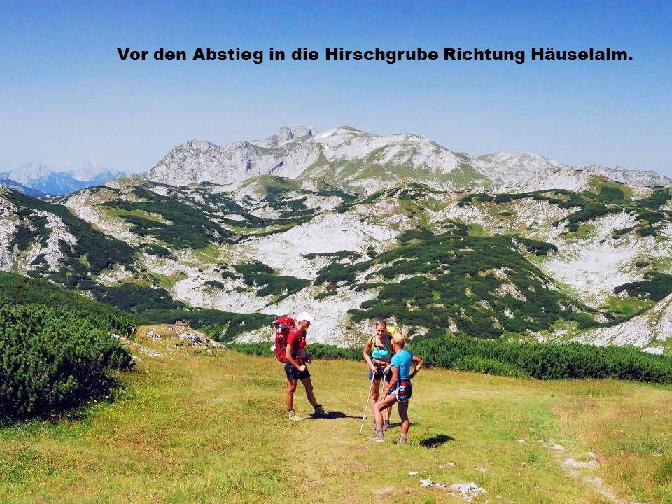 Vor den Abstieg in die Hirschgrube Richtung Häuselalm.