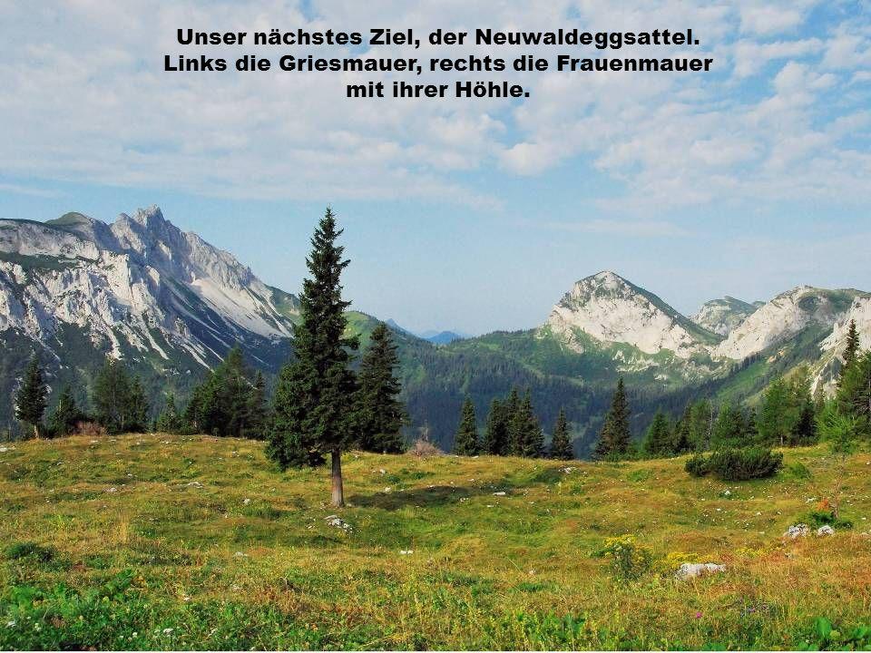 Unser nächstes Ziel, der Neuwaldeggsattel.