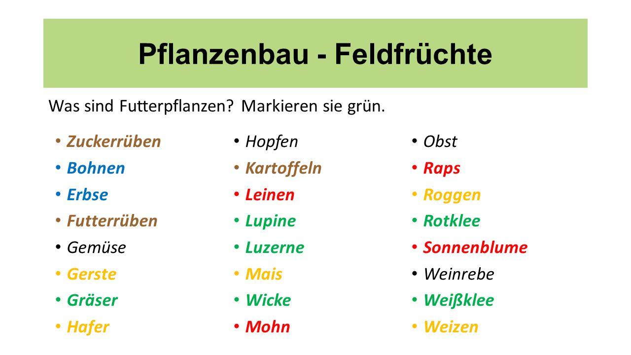 Pflanzenbau - Feldfrüchte