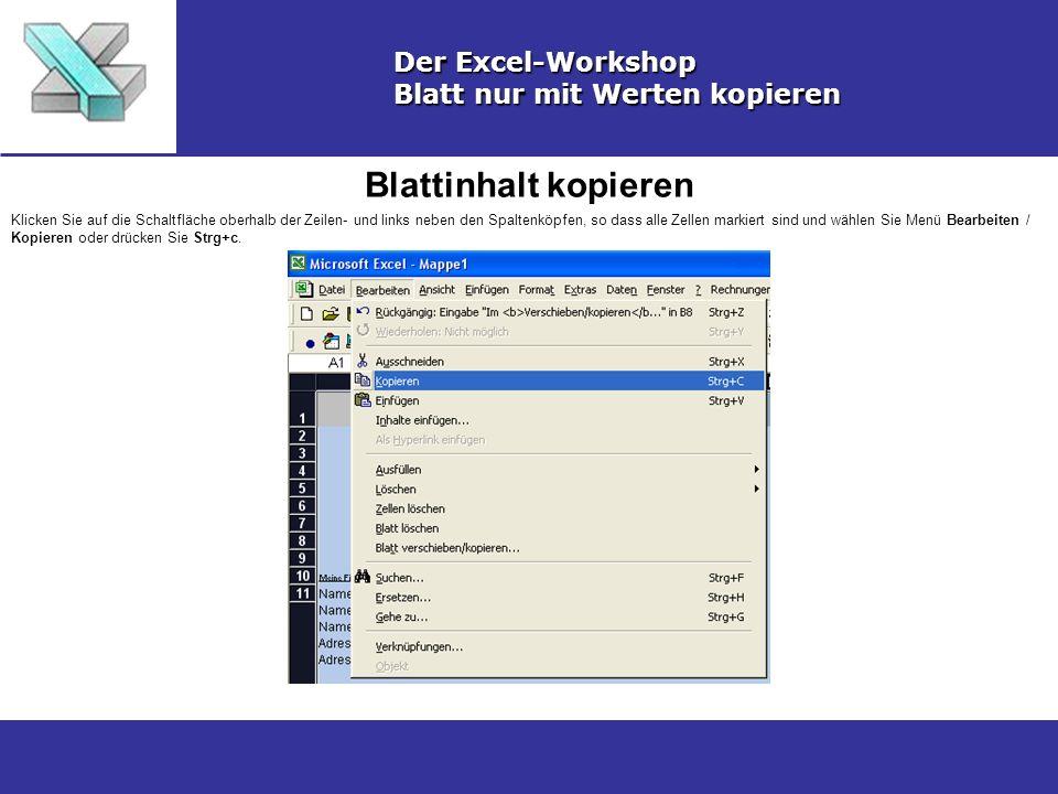 Blattinhalt kopieren Der Excel-Workshop Blatt nur mit Werten kopieren