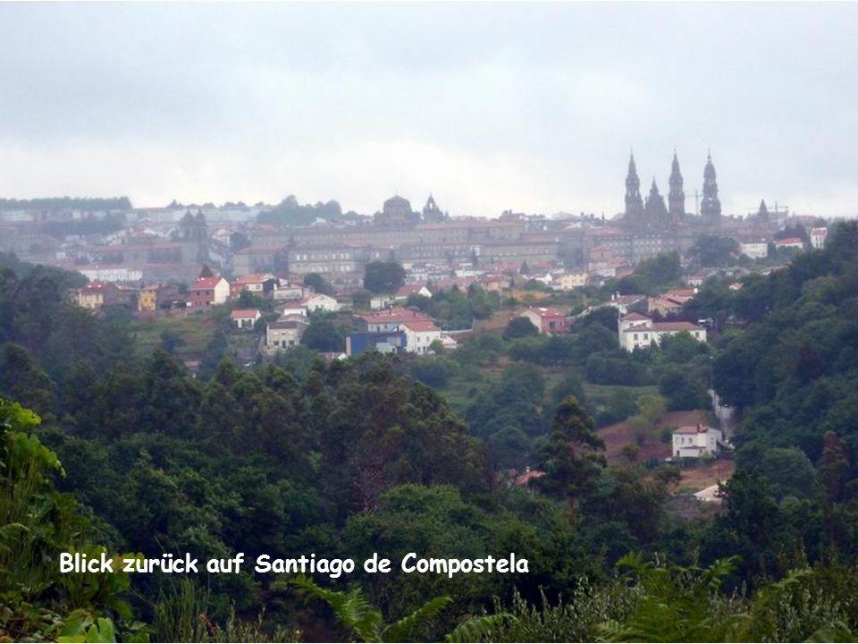 Blick zurück auf Santiago de Compostela