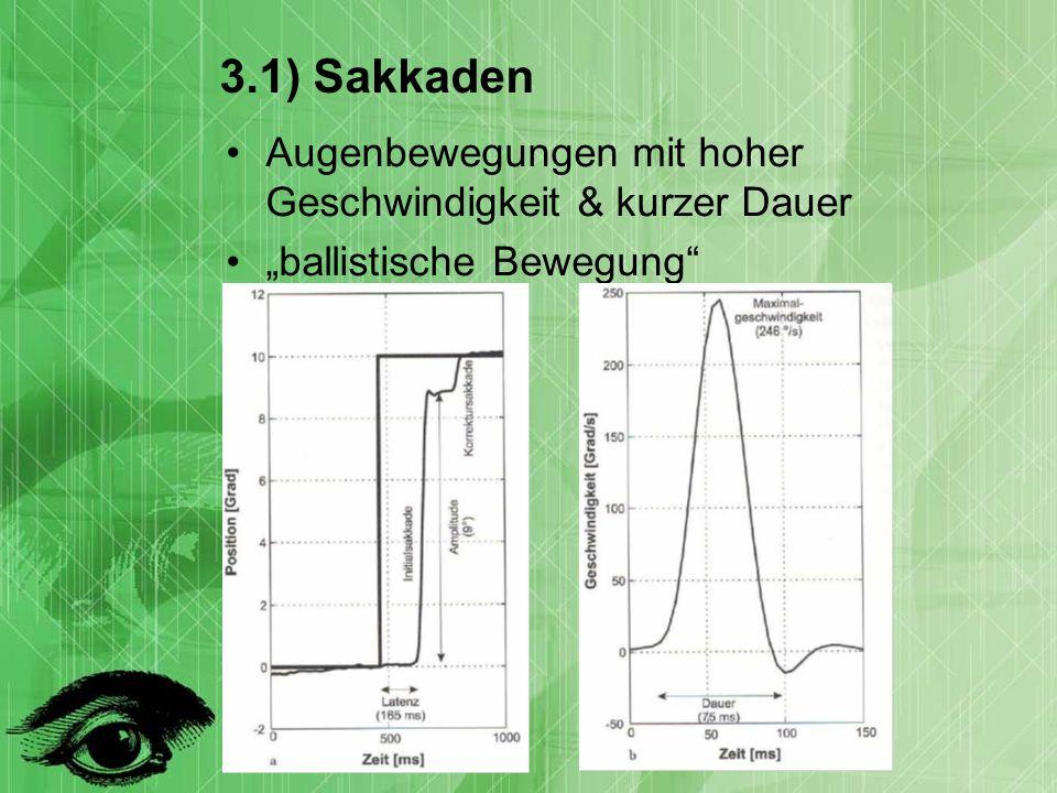 3.1) Sakkaden Augenbewegungen mit hoher Geschwindigkeit & kurzer Dauer