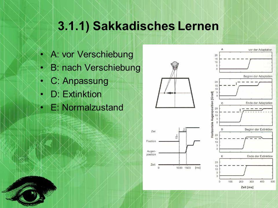3.1.1) Sakkadisches Lernen A: vor Verschiebung B: nach Verschiebung