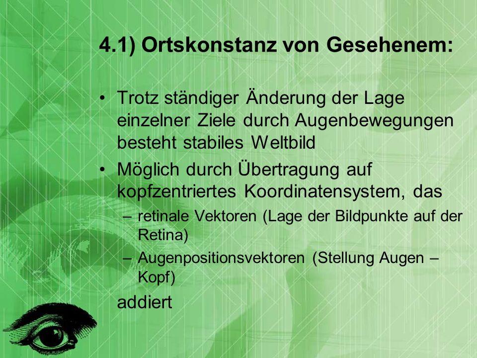 4.1) Ortskonstanz von Gesehenem: