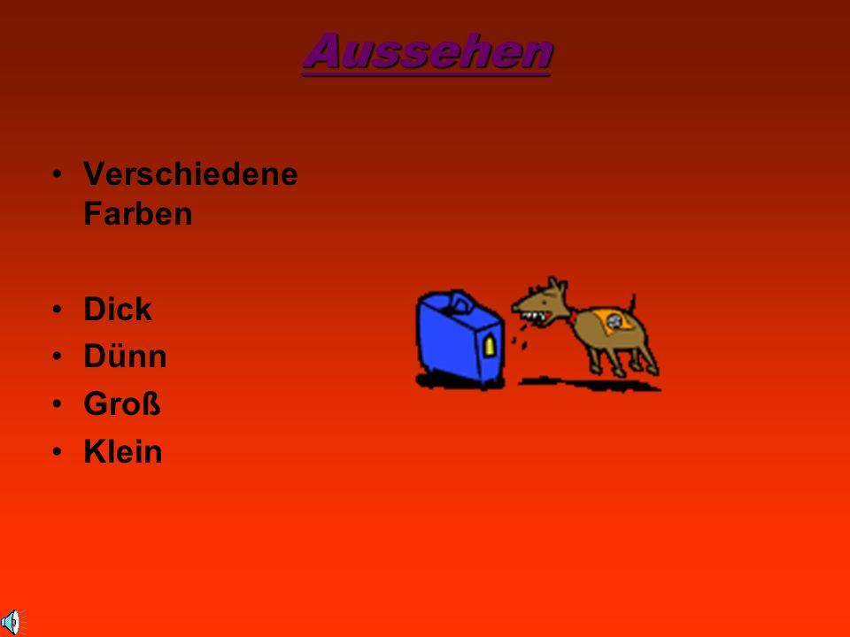 Aussehen Verschiedene Farben Dick Dünn Groß Klein