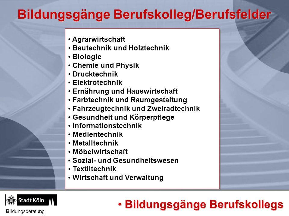 Bildungsgänge Berufskolleg/Berufsfelder