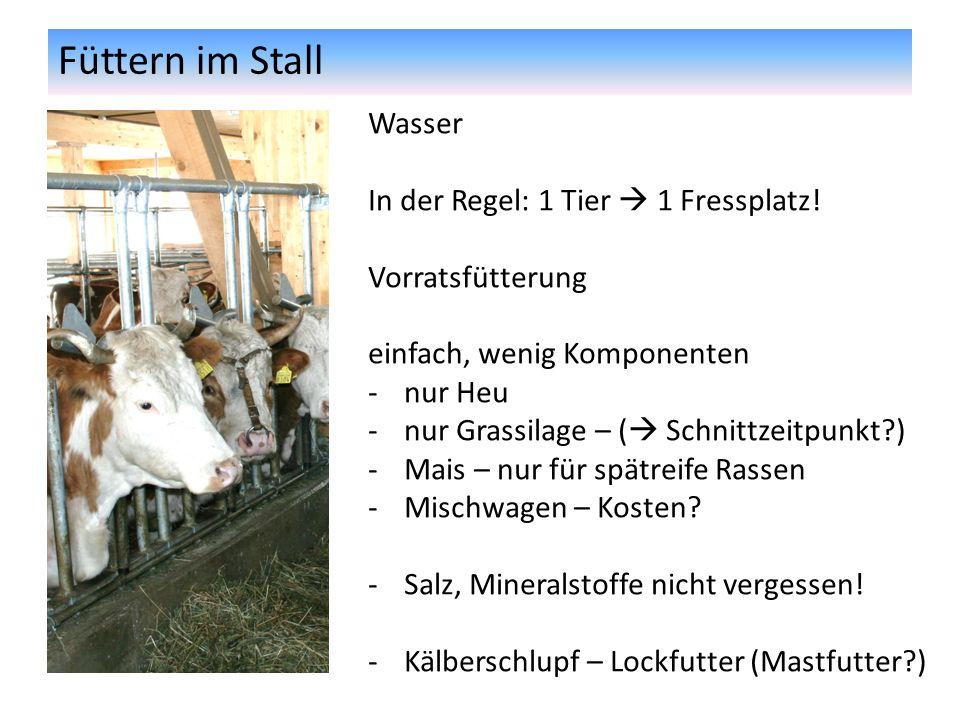 Füttern im Stall Wasser In der Regel: 1 Tier  1 Fressplatz!