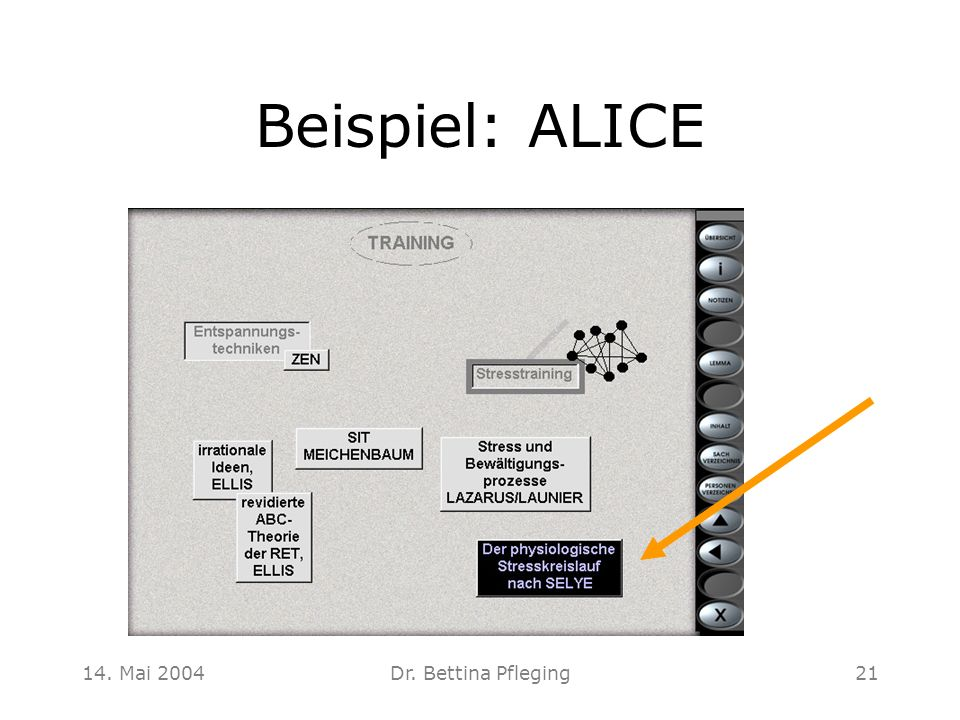Beispiel: ALICE 14. Mai 2004 Dr. Bettina Pfleging