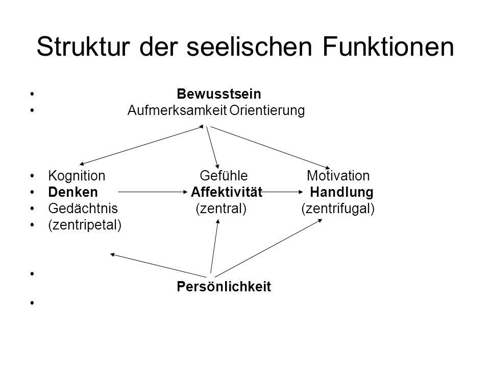 Struktur der seelischen Funktionen