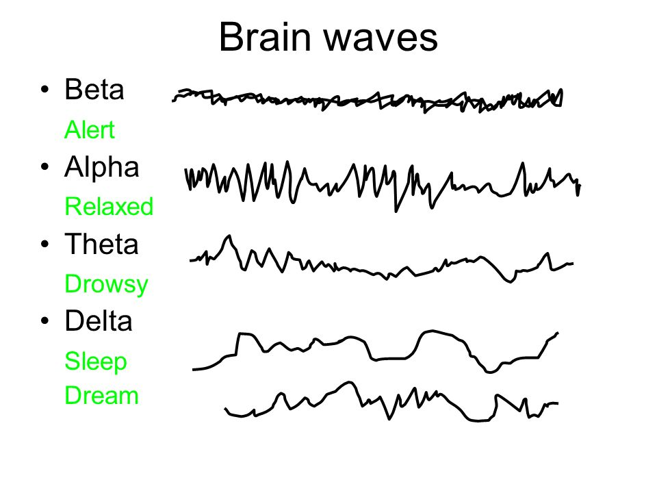 Brain waves Beta Alert Alpha Relaxed Theta Drowsy Delta Sleep Dream