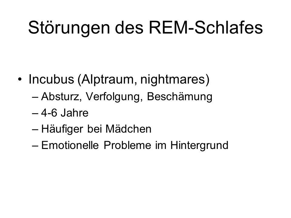 Störungen des REM-Schlafes
