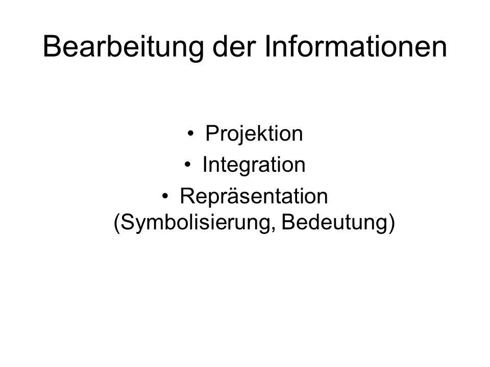 Bearbeitung der Informationen