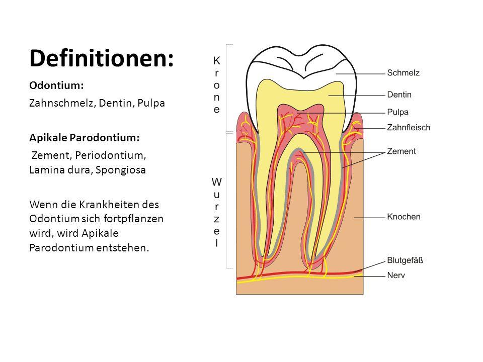 Definitionen: Odontium: Zahnschmelz, Dentin, Pulpa