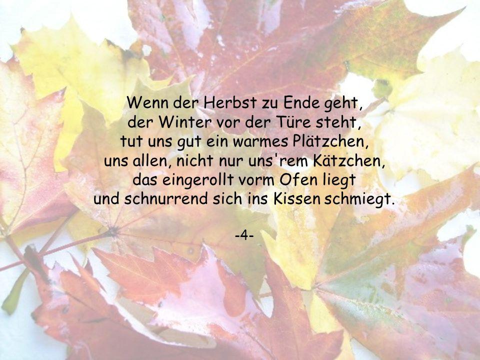 Wenn der Herbst zu Ende geht, der Winter vor der Türe steht, tut uns gut ein warmes Plätzchen, uns allen, nicht nur uns rem Kätzchen, das eingerollt vorm Ofen liegt und schnurrend sich ins Kissen schmiegt.