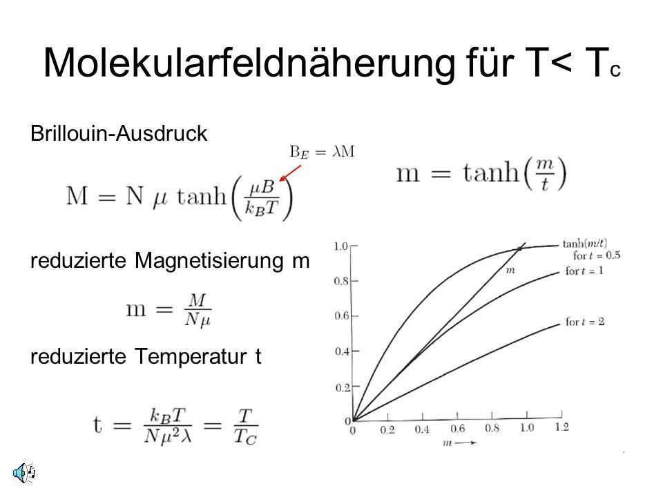Molekularfeldnäherung für T< Tc