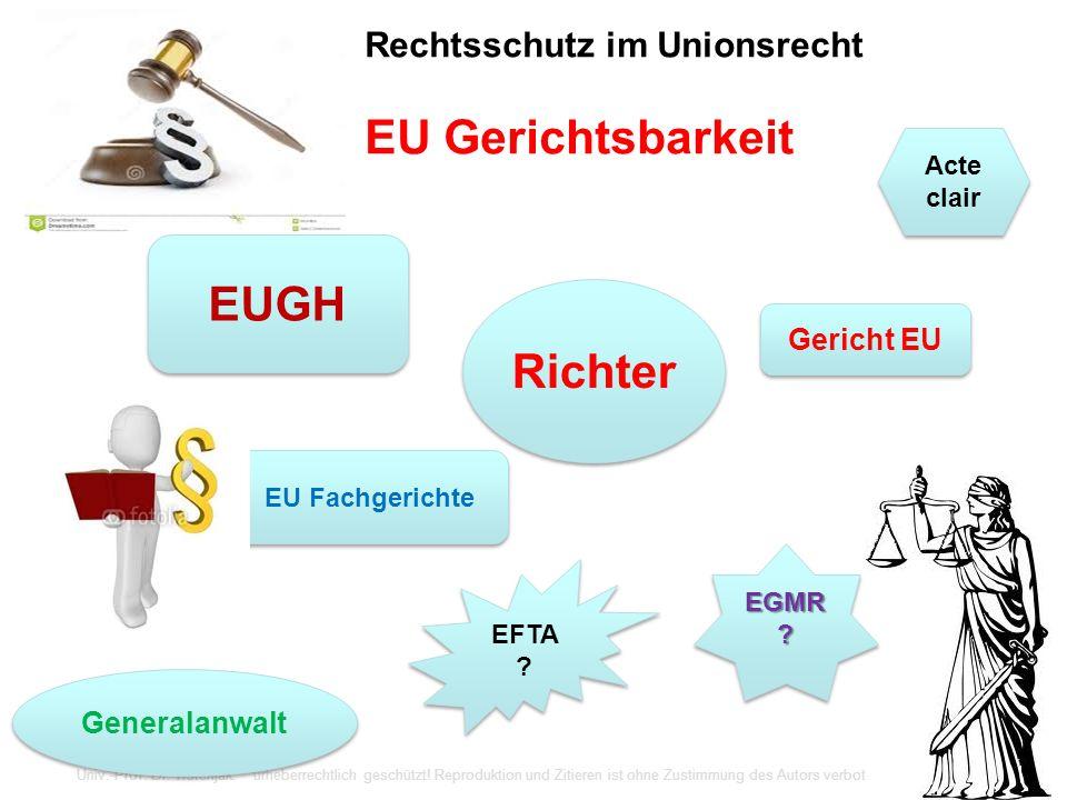 Rechtsschutz im Unionsrecht EU Gerichtsbarkeit