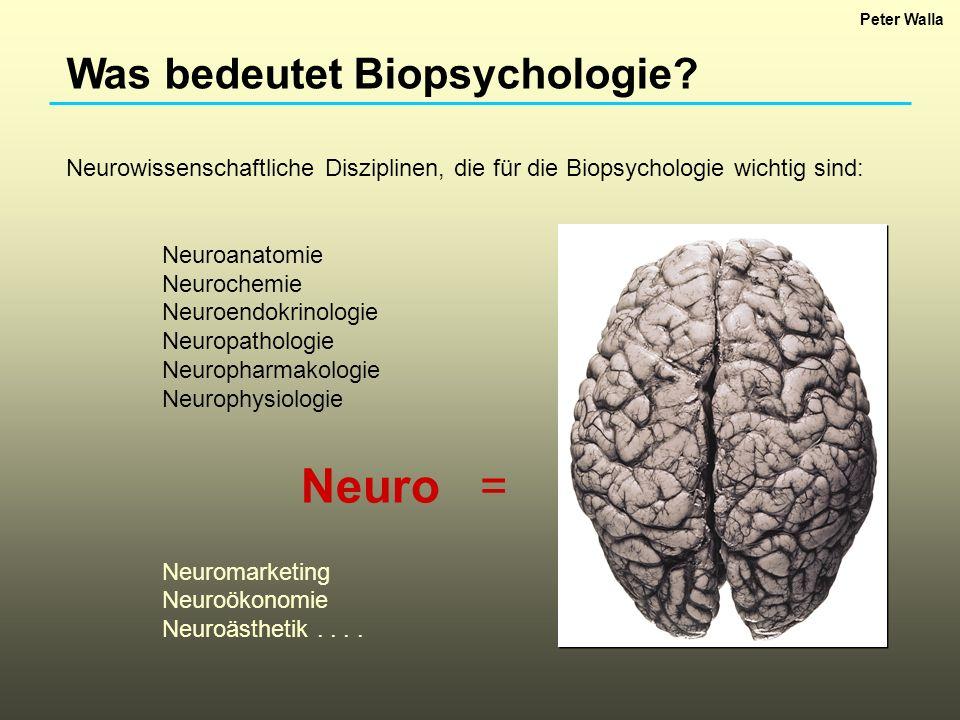 Neuro = Was bedeutet Biopsychologie