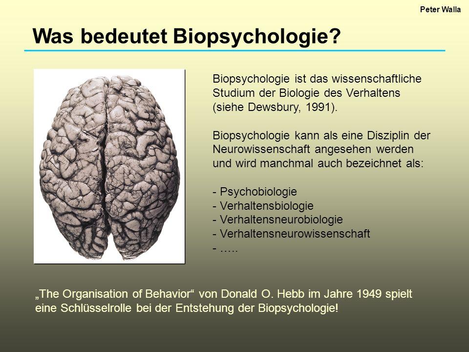 Was bedeutet Biopsychologie