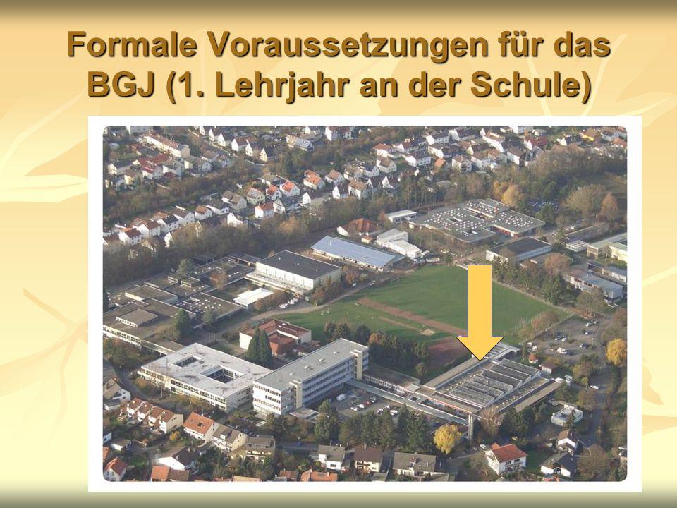Formale Voraussetzungen für das BGJ (1. Lehrjahr an der Schule)
