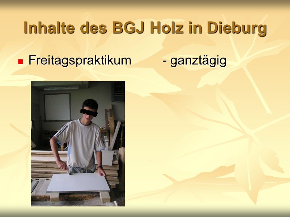 Inhalte des BGJ Holz in Dieburg