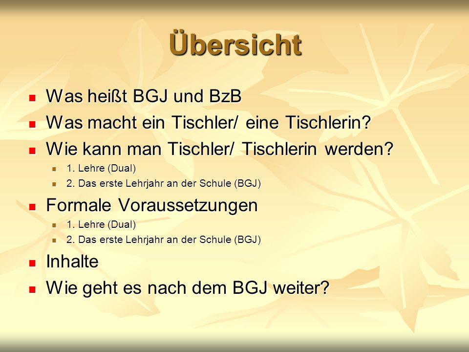 Übersicht Was heißt BGJ und BzB