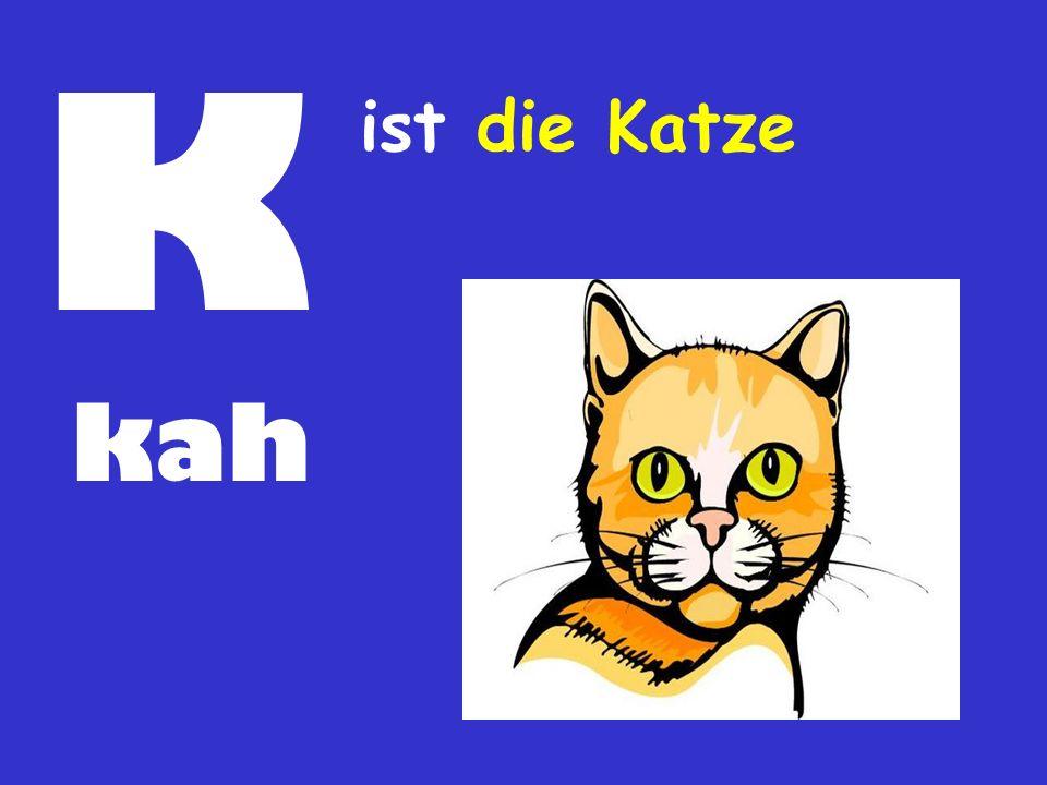 K ist die Katze kah