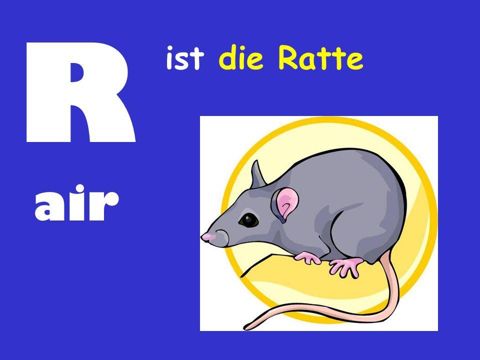 R ist die Ratte air