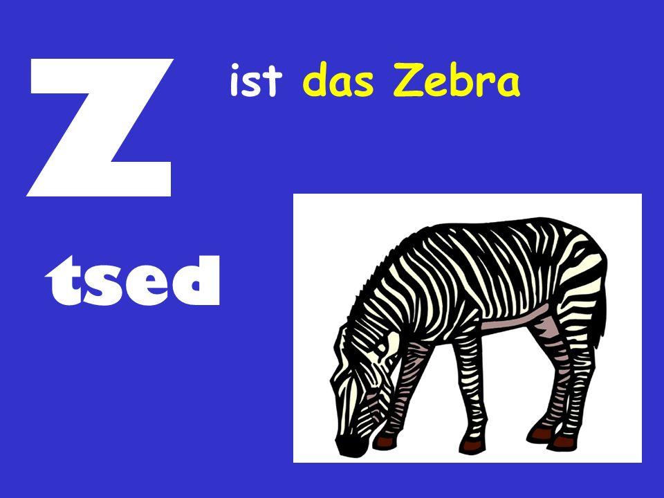 Z ist das Zebra tsed