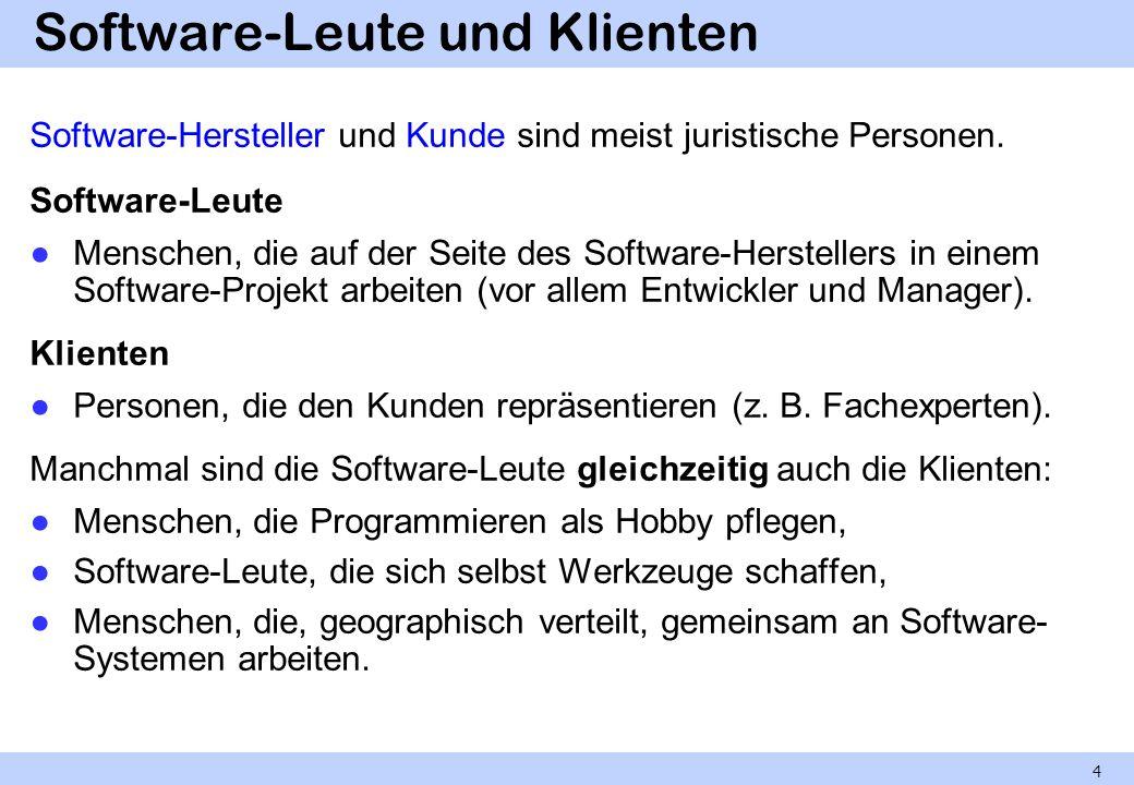 Software-Leute und Klienten