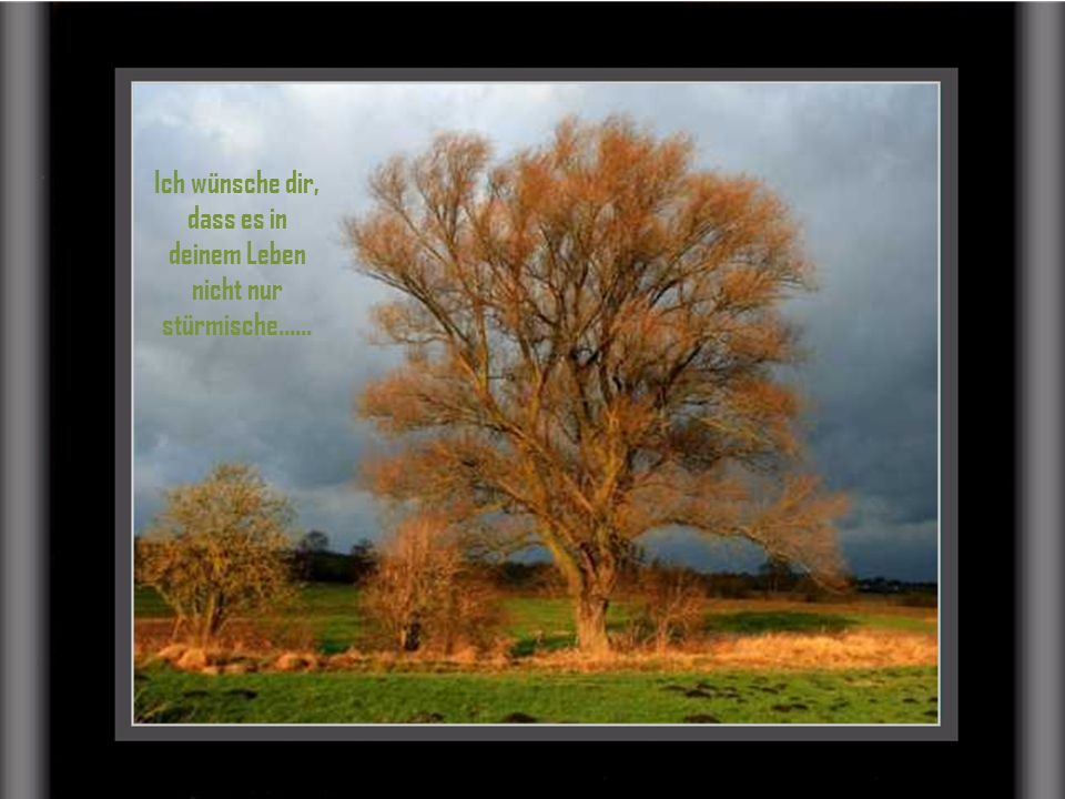 Ich wünsche dir, dass es in deinem Leben nicht nur stürmische......