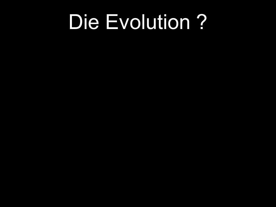 Die Evolution Der Urknall