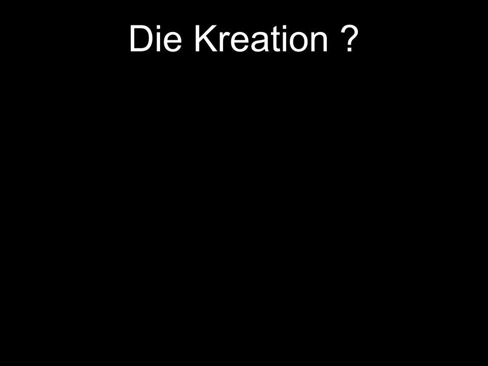 Die Kreation Die Schöpfung