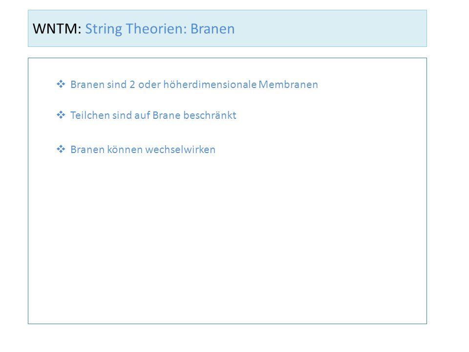 WNTM: String Theorien: Branen