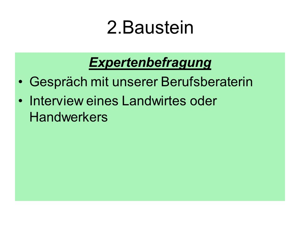 2.Baustein Expertenbefragung Gespräch mit unserer Berufsberaterin