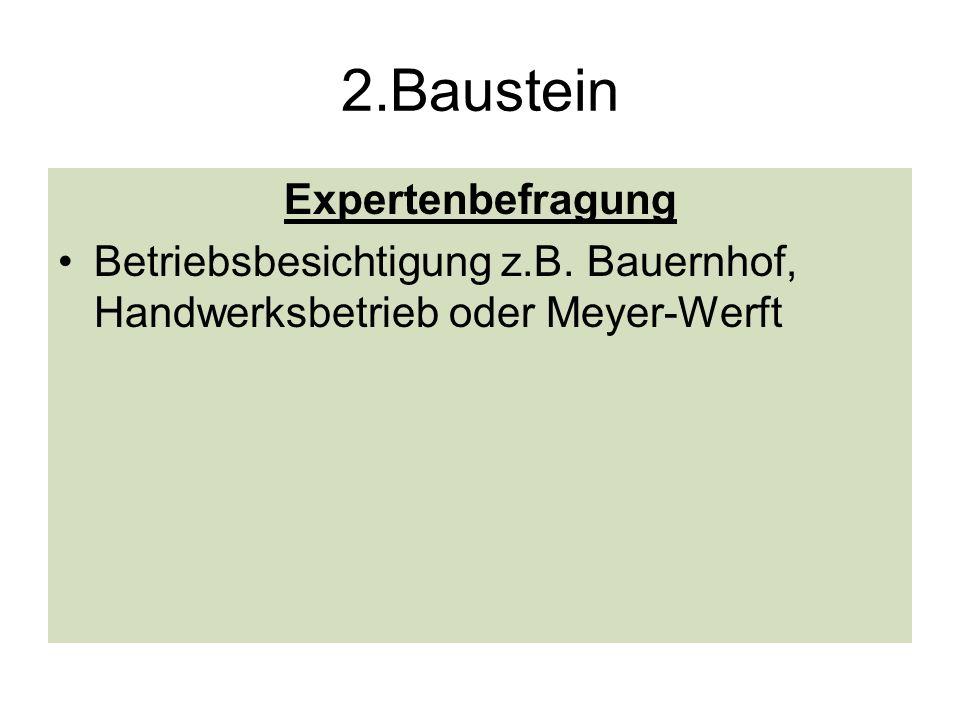 2.Baustein Expertenbefragung