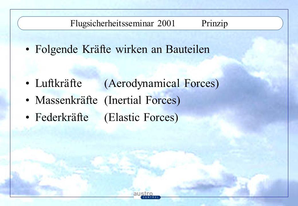 Flugsicherheitsseminar 2001 Prinzip