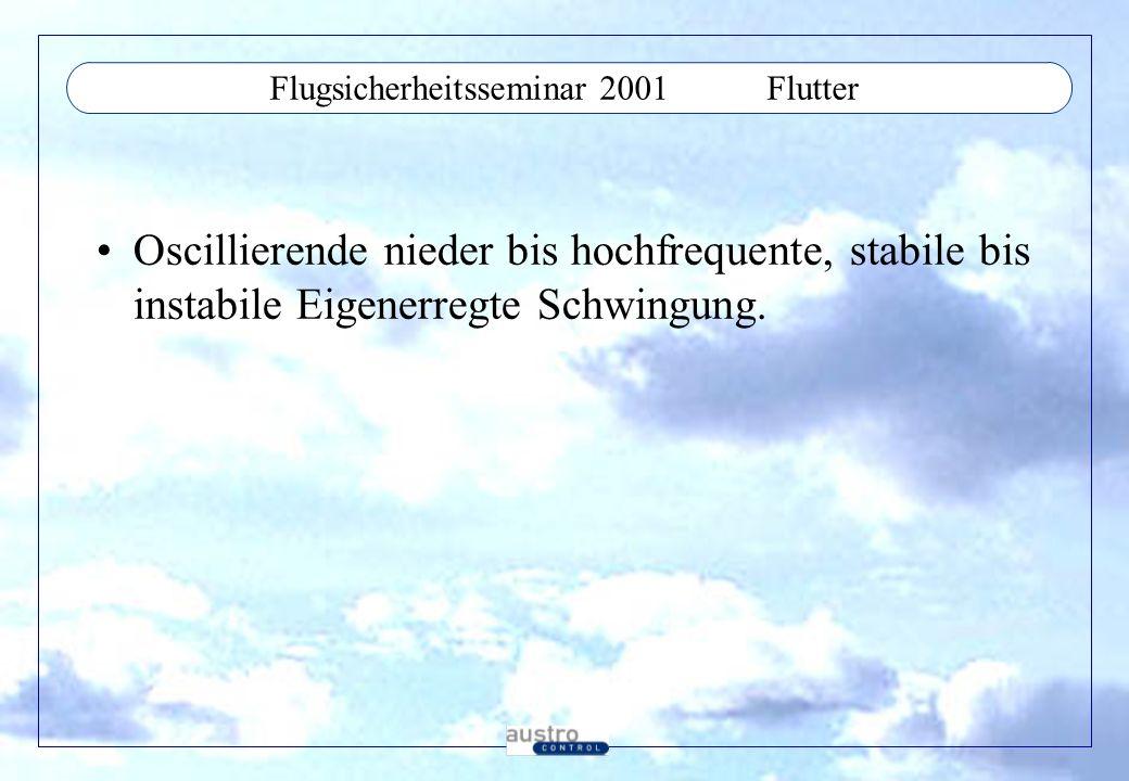 Flugsicherheitsseminar 2001 Flutter