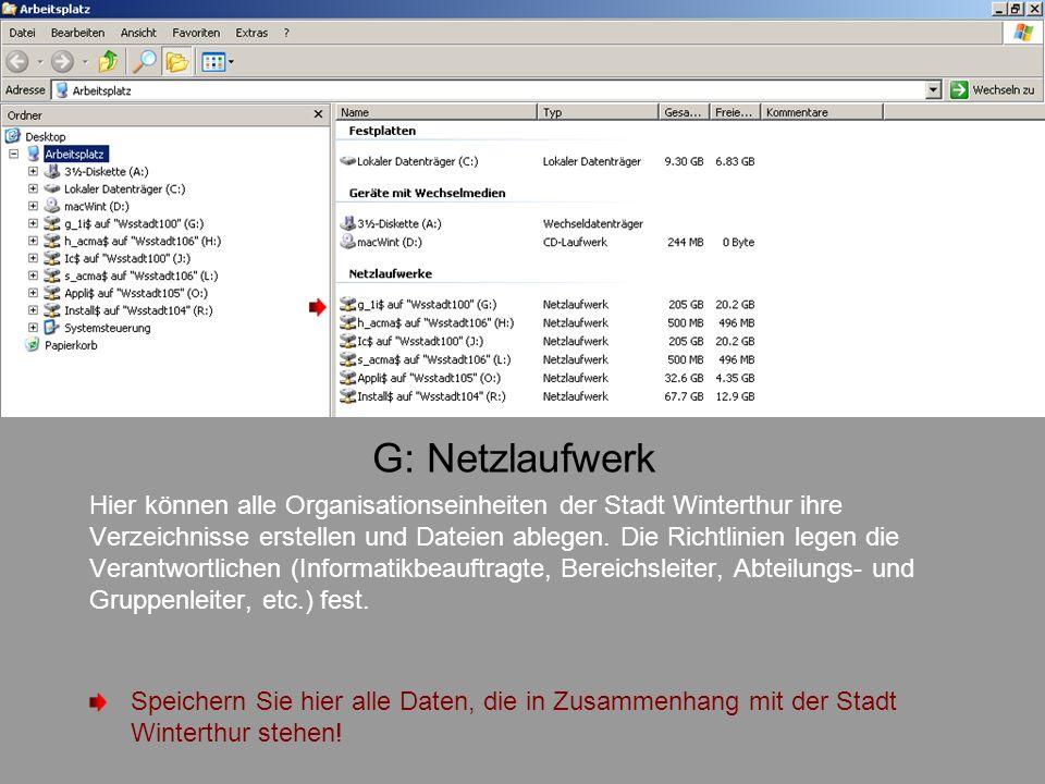 G: Netzlaufwerk