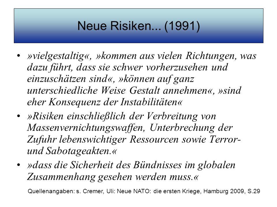 Neue Risiken... (1991)