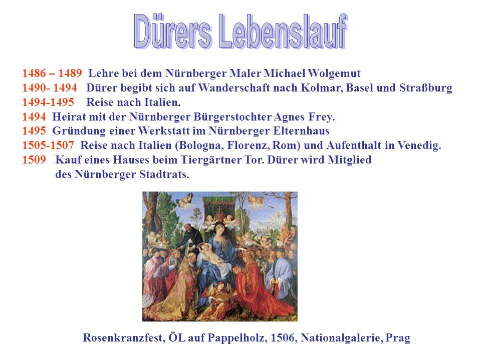 Dürers Lebenslauf 1486 – 1489 Lehre bei dem Nürnberger Maler Michael Wolgemut.