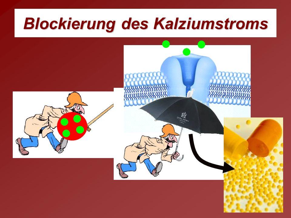Blockierung des Kalziumstroms