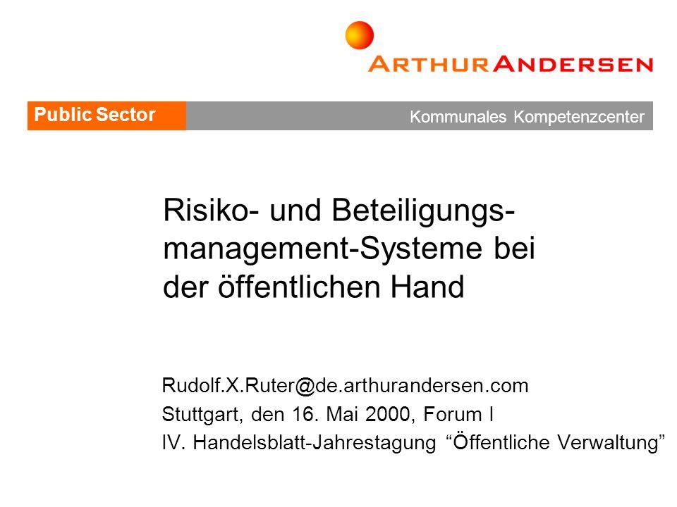 Risiko- und Beteiligungs-management-Systeme bei der öffentlichen Hand
