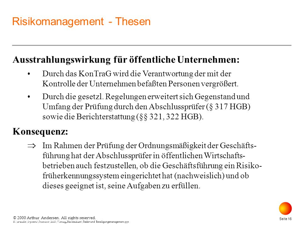 Risikomanagement - Thesen