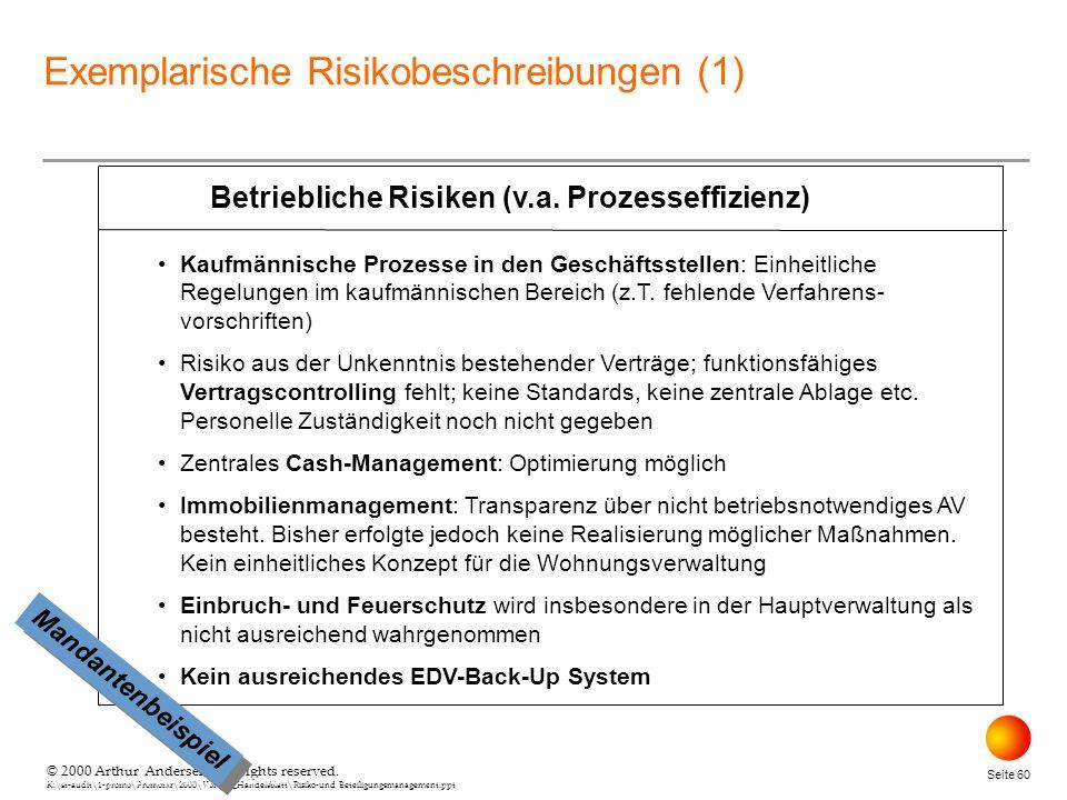 Betriebliche Risiken (v.a. Prozesseffizienz)
