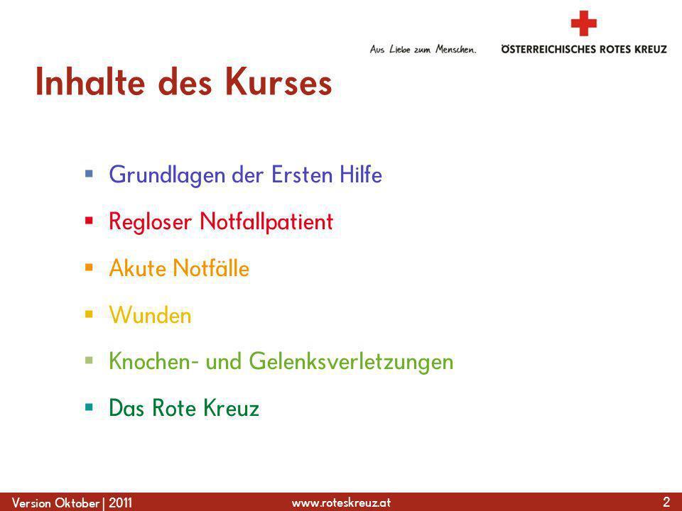 Inhalte des Kurses Grundlagen der Ersten Hilfe Regloser Notfallpatient