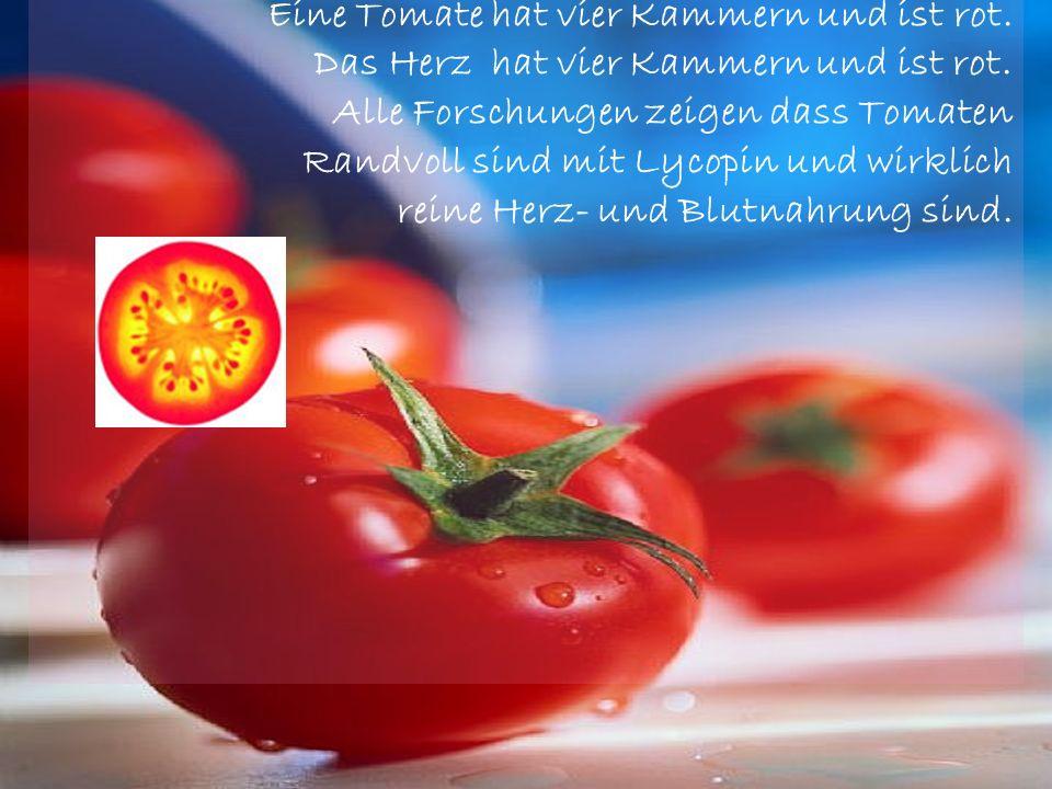 Eine Tomate hat vier Kammern und ist rot.