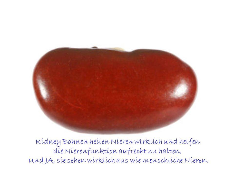 Kidney Bohnen heilen Nieren wirklich und helfen