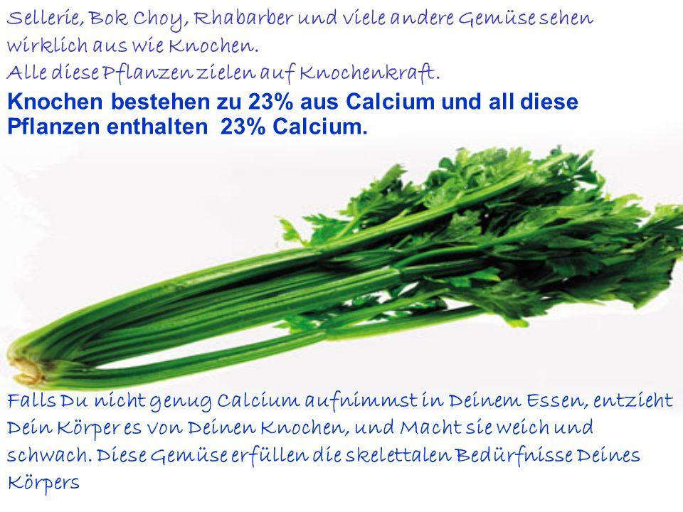 Sellerie, Bok Choy, Rhabarber und viele andere Gemüse sehen wirklich aus wie Knochen.