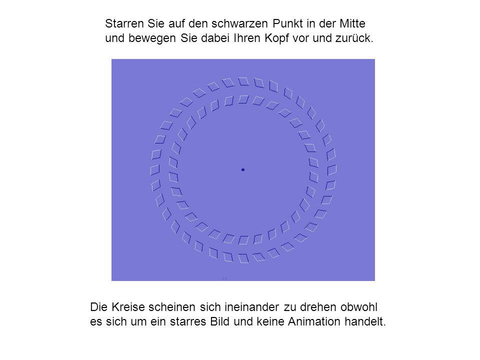 Starren Sie auf den schwarzen Punkt in der Mitte und bewegen Sie dabei Ihren Kopf vor und zurück.