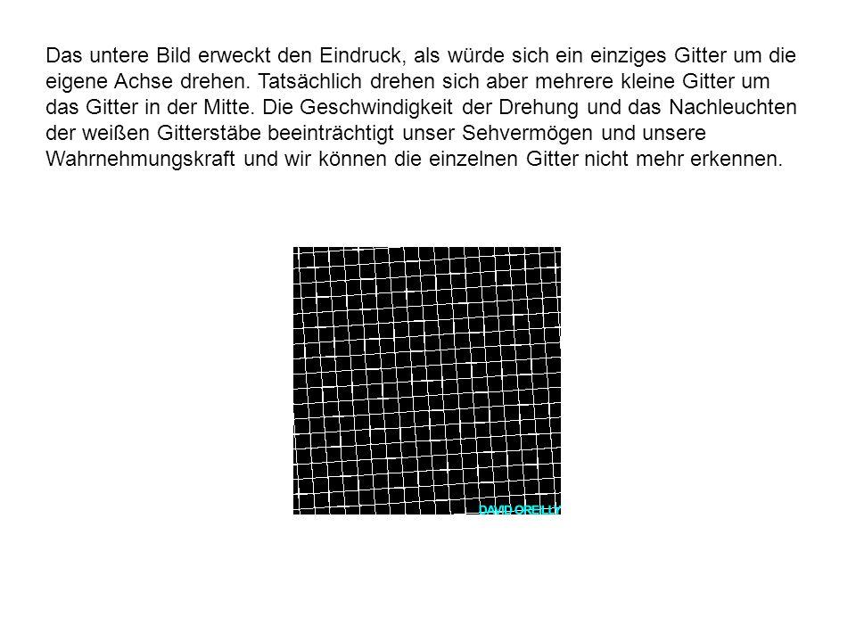 Das untere Bild erweckt den Eindruck, als würde sich ein einziges Gitter um die eigene Achse drehen.